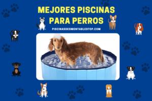 Mejores Piscinas para perros